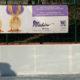 Wächter Plakat Eislaufplatz Bozen 2017