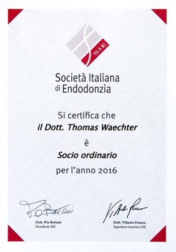 2016 Zertifikat Endodontie Certificato Endodonzia Italien Italia Dr Thomas Waechter Zahnarzt Odontoiatra Bozen Bolzano