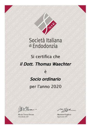 2020 Zertifikat Endondontie Certificato Endodonzia 2020 01 Italien Italia Dr Thomas Waechter Zahnarzt Odontoiatra Bozen Bolzano
